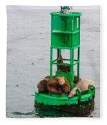 Seal Nap Time Fleece Blanket
