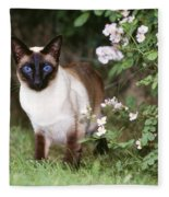 Seal Point Siamese Cat Fleece Blanket