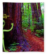 Searching For Friends Among The Redwoods Fleece Blanket