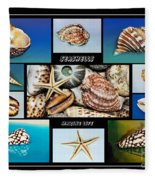 Seashell Collection 2 Fleece Blanket