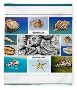 Seashell Collection 3 - Collage Fleece Blanket