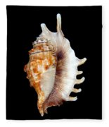 Seashell Lambis Digitata Fleece Blanket