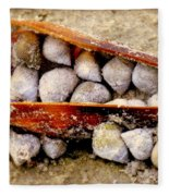 Seashell Reunion Fleece Blanket