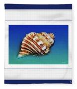 Seashell Wall Art 1 - Blue Frame Fleece Blanket