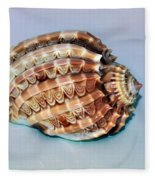 Seashell Wall Art 9 - Harpa Ventricosa Fleece Blanket