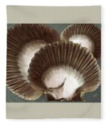 Seashells Spectacular No 22 Fleece Blanket