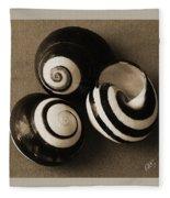 Seashells Spectacular No 27 Fleece Blanket