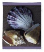 Seashells Spectacular No 30 Fleece Blanket