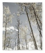 Silver Birch  Fleece Blanket