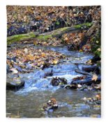 Seasons Change Fleece Blanket