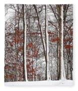Seasons Converge Fleece Blanket