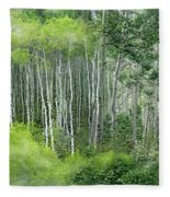 Seasons Of The Aspen Fleece Blanket