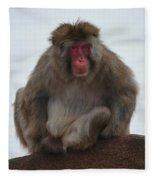 Seated Macaque Snow Monkey Fleece Blanket