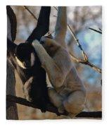 Secrets Fleece Blanket