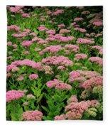 Sedum Garden Fleece Blanket