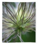 Seed Head Fleece Blanket