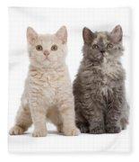 Selkirk Rex Kittens Fleece Blanket