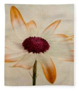 Senetti Pericallis Orange Tip Fleece Blanket
