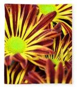September's Radiance In A Flower Fleece Blanket