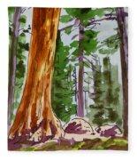Sequoia Park - California Sketchbook Project  Fleece Blanket
