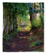 Serene Garden Path Fleece Blanket