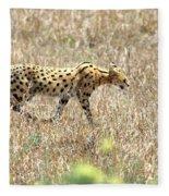 Serval Cat - Kenya Fleece Blanket