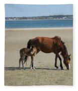 Shackleford Banks Foal Fleece Blanket