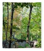Shade Upon A Rock Fleece Blanket