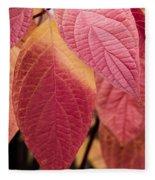 Shades Of Autumn Fleece Blanket