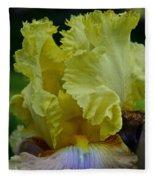Shades Of Iris Fleece Blanket