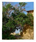 Shadows Of Desert Fleece Blanket