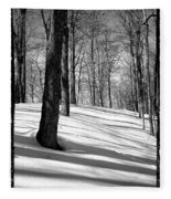 Shadows At Mccauley Mountain Fleece Blanket