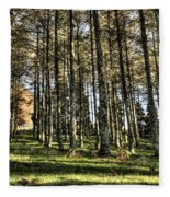 Shadows Of The Larch Forest Sunset No2 Fleece Blanket