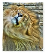 Shake It Off Lazy Boy At The Buffalo Zoo Fleece Blanket