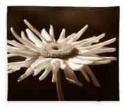 Shasta Daisy Flower Sepia Fleece Blanket