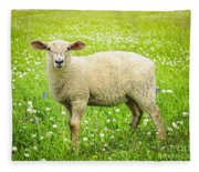 Sheep In Summer Meadow Fleece Blanket