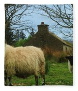 Sheep Of Donegal Ireland Fleece Blanket