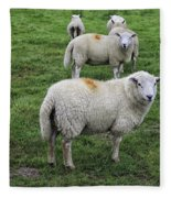 Sheep On Parade Fleece Blanket