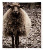 Sheep Stare Fleece Blanket