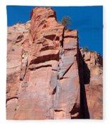 Sheer Canyon Walls Fleece Blanket