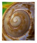 Shell Spiral Fleece Blanket