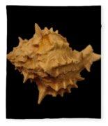 Shells Of The Gulf Coast 4 Fleece Blanket