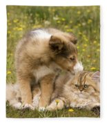 Sheltie Puppy And Persian Cat Fleece Blanket