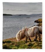 Shetland Pony At Shore  Shetland Fleece Blanket