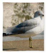 Shore Bird Fleece Blanket