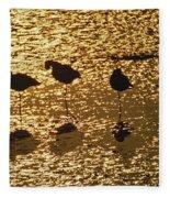 Shore Birds Fleece Blanket