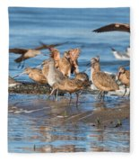 Shorebirds Flocking At Bodega Bay Fleece Blanket