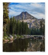 Shoreline View Of Anthony Lake Fleece Blanket