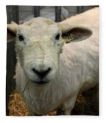 Shorn Sheep Fleece Blanket