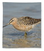Short-billed Dowitcher, Breeding Fleece Blanket